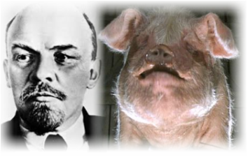 an analysis of the animalism versus marxism in the novel animal farm by george orwell How is marxism portrayed in 'animal farm' by  the book animal farm by george orwell is a novel which describes how  based on animalism every animal had to.